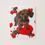 Amor (corazones) Dachsies - Dachshund Puzzle