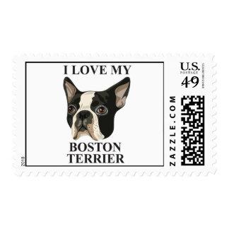 Amor de Boston Terrier Envio