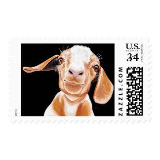 Amor de la cabra estampillas
