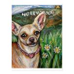 Amor de la chihuahua de Hollywood Tarjeta Postal