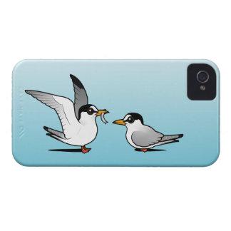 Amor de la golondrina de mar Case-Mate iPhone 4 cobertura