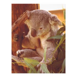 Amor de la koala plantillas de membrete