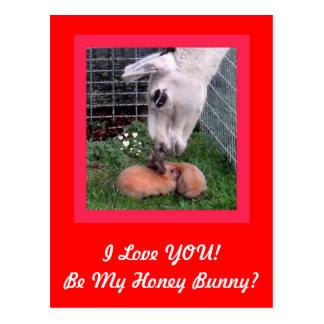 Amor de la llama del conejito de la tarjeta del postales