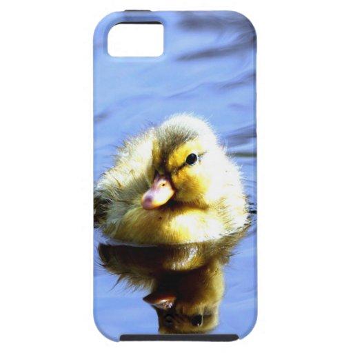 Amor de la mamá del anadón lindo del pato que iPhone 5 carcasas