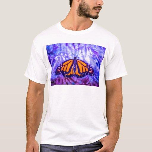 Amor de la mariposa playera
