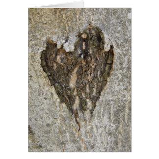 Amor de la naturaleza tarjeta de felicitación