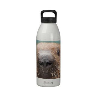 Amor de la nutria de mar botellas de agua reutilizables