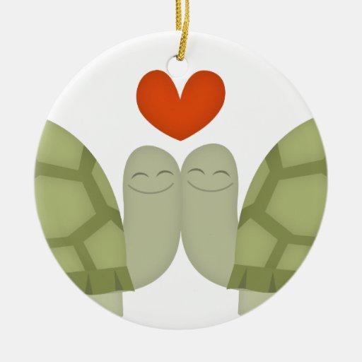 Amor de la tortuga ornatos