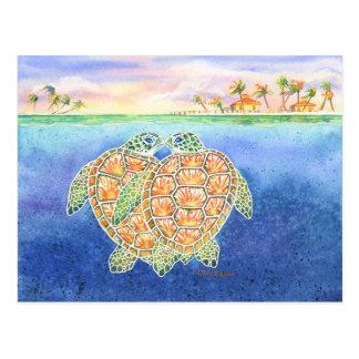 Amor de la tortuga postal