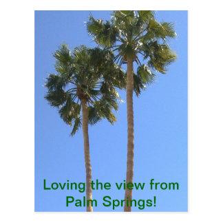 ¡Amor de la visión desde el Palm Springs! Postal