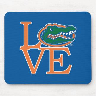 Amor de los cocodrilos de la Florida Tapete De Ratón