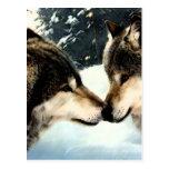 Amor de los pares de la nieve del invierno de la postal