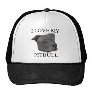 ¡Amor de PITBULL! Gorro