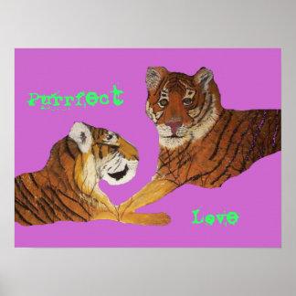 Amor de Purrfect de los tigres Póster