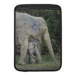 Amor del bebé del elefante funda macbook air