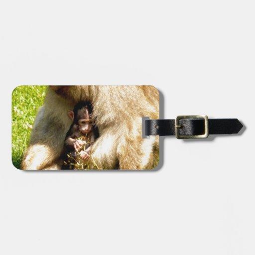 amor del bebé del mono de la madre etiqueta de equipaje