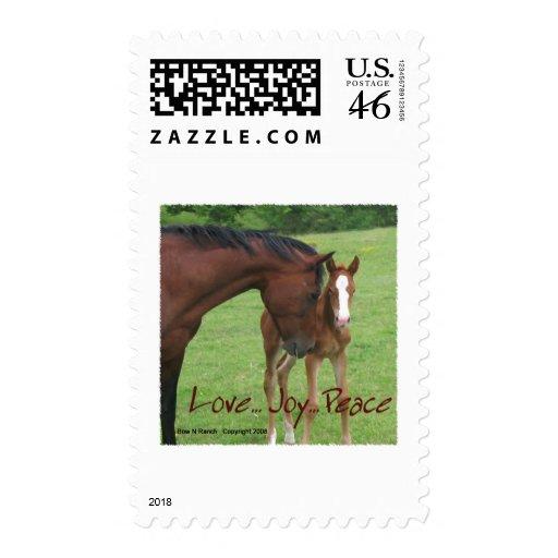 Amor del caballo, alegría, paz envio