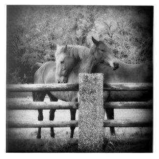 Amor del caballo - par de caballos en abrazo cariñ tejas  ceramicas