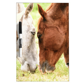 Amor del caballo pizarra blanca