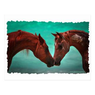 Amor del caballo postal