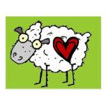 Amor del campesino sureño - amor de las ovejas postal