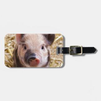 Amor del cerdo de Happines Etiqueta Para Maleta