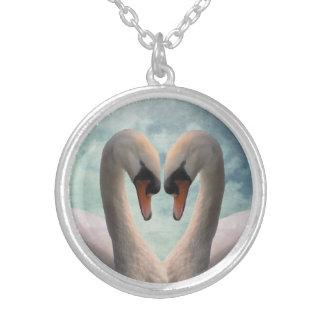 Amor del cisne colgante