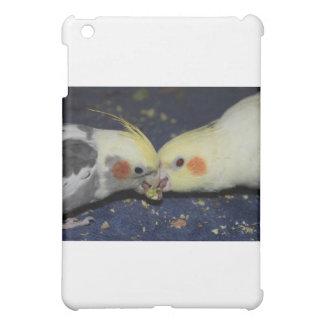 Amor del Cockatiel