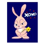 Amor del conejito tarjeta postal