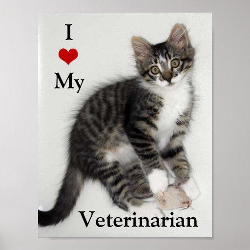 Amor del gatito I de Zorro mi poster veterinario
