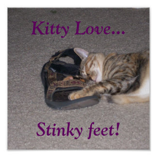 ¡Amor del gatito…, pies Stinky! Póster