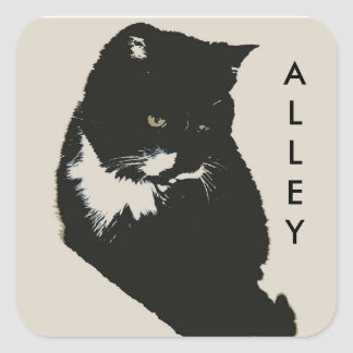 Amor del gato callejero pegatina cuadrada