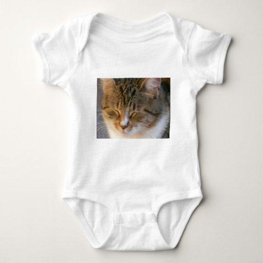 Amor del gato de Tabby T Shirt