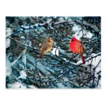 Amor del invierno, postal