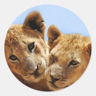 Amor del león del bebé pegatina redonda