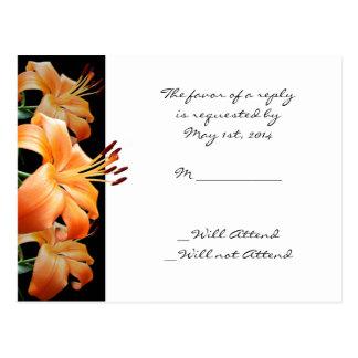 Amor del lirio: Lirio anaranjado en negro Postal
