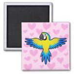 Amor del Macaw/del loro Imán Cuadrado