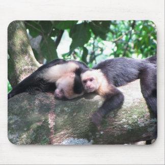 Amor del mono alfombrilla de ratones