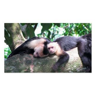 Amor del mono plantillas de tarjetas de visita