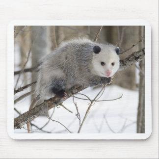 Amor del oposum tapetes de ratón