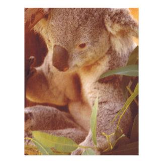 Amor del oso de koala plantillas de membrete