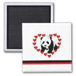 Amor del oso de panda iman