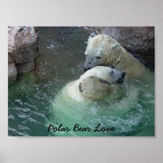 Amor del oso polar poster