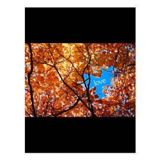 Amor del otoño postales