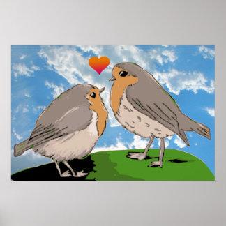 Amor del pájaro del redbreast del petirrojo posters