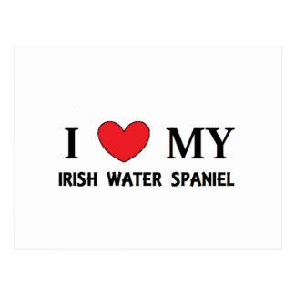 amor del perro de aguas de agua irlandesa postal