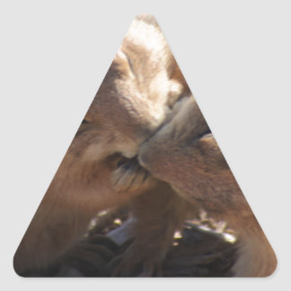 Amor del perro de las praderas pegatina triangular
