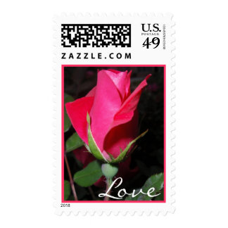 Amor del rosa rojo envio