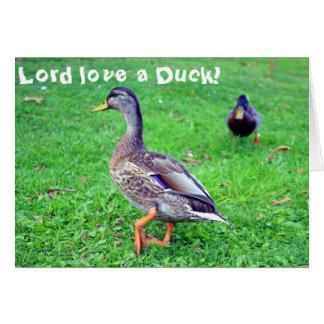 ¡Amor del señor un pato! Tarjeta