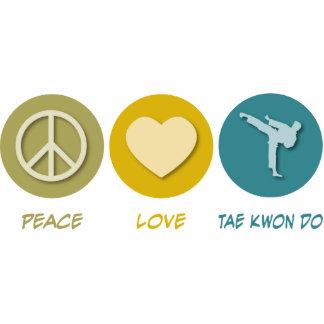 Amor el Taekwondo de la paz Esculturas Fotograficas